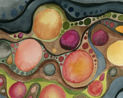 Plant Cell Wall 1